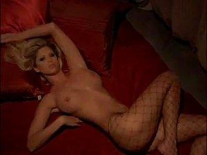 Playboy Playmate Video Calendar 2007